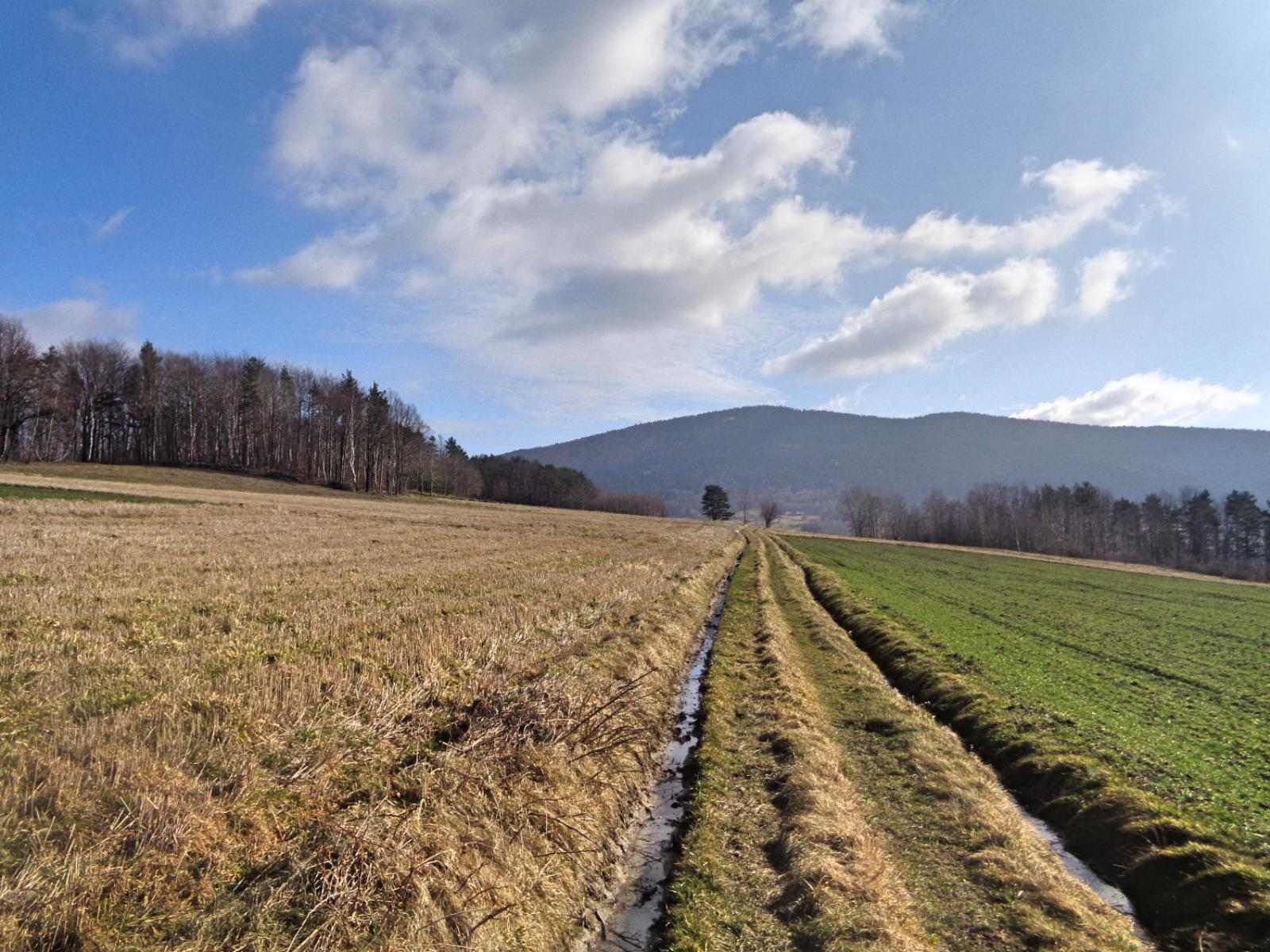 Zielony szlak z Lubiomira do Wiśniowej