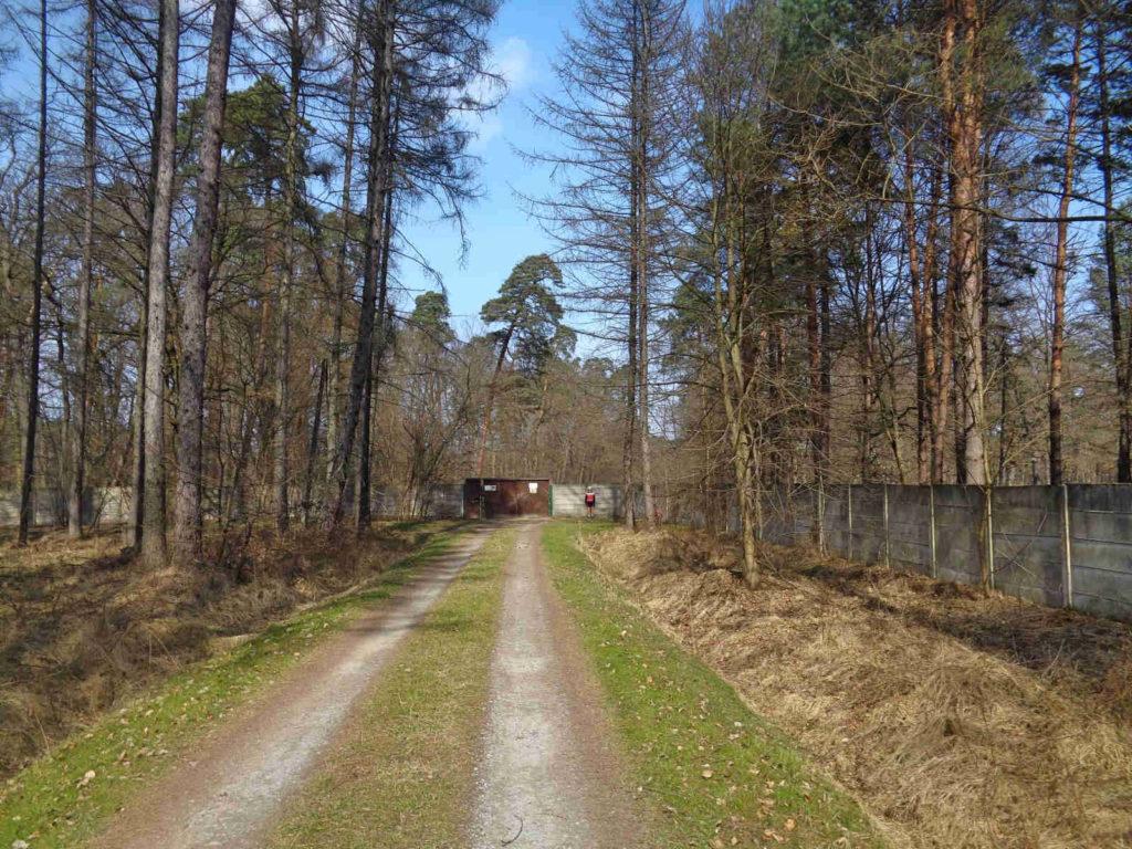 Puszcza Niepołomicka, ośrodek hodowli żubrów