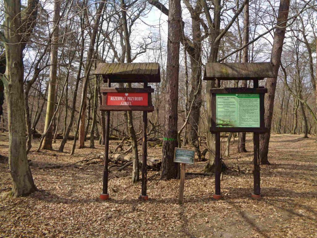 Puszcza Niepołomicka, Rezerwat Gibiel