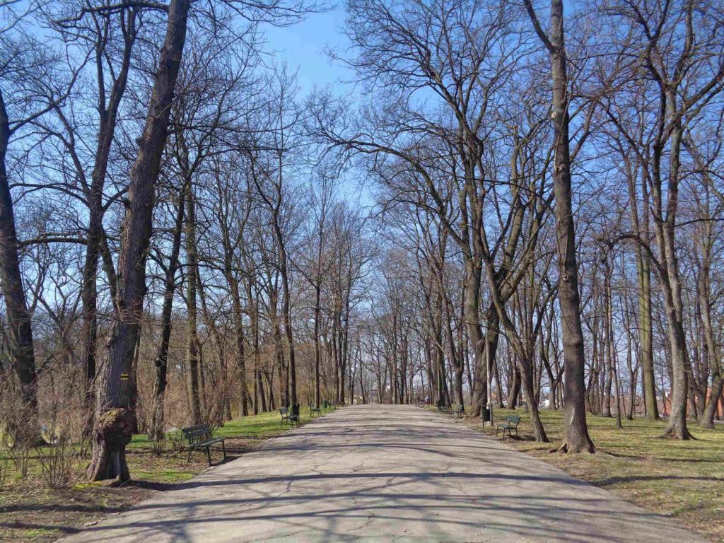 Kraków, Park Bednarskiego