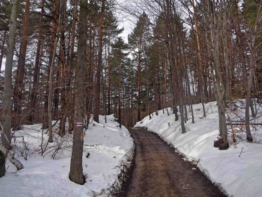 Czerwony szlak na Leskowiec