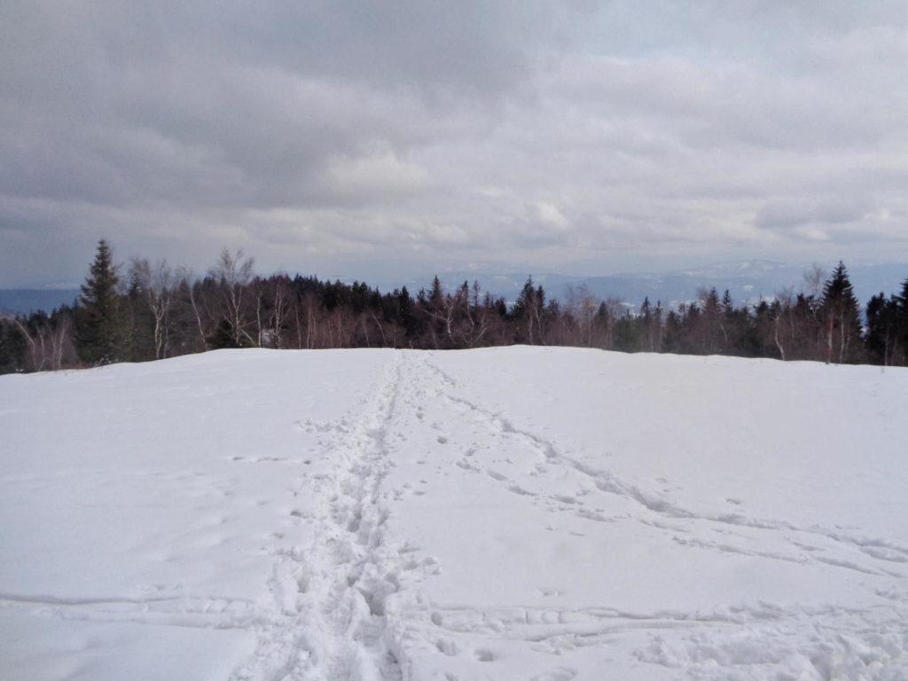 Leskowiec
