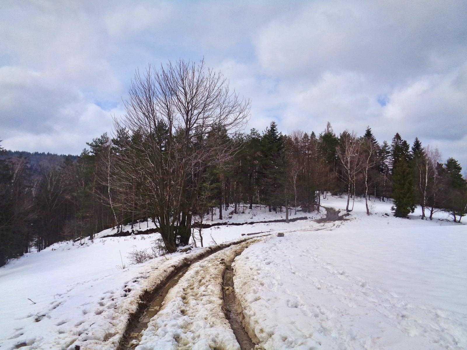 Leskowiec, czerwony szlak