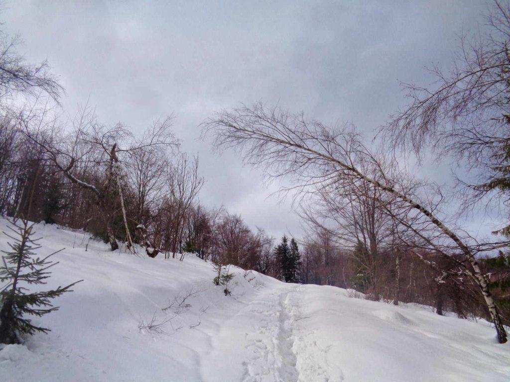 Leskowiec, wejście z Krzeszowa