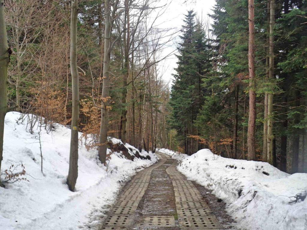 Leskowiec, wejście żółtym szlakiem