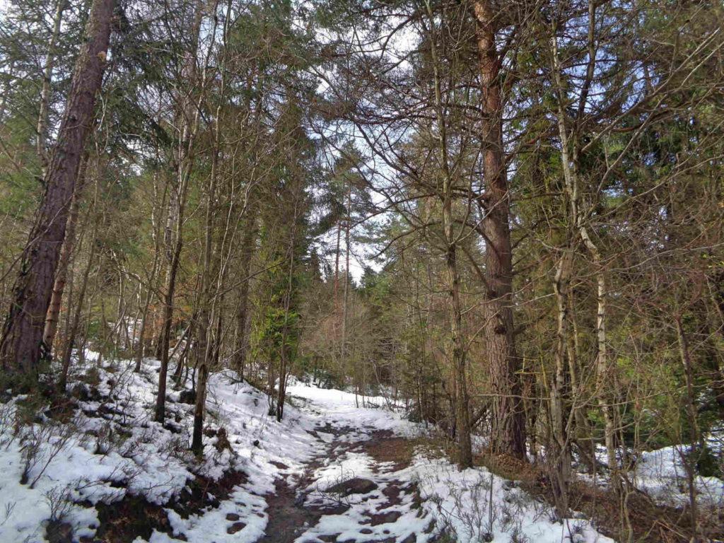 Szlak na Leskowiec z Krzeszowa