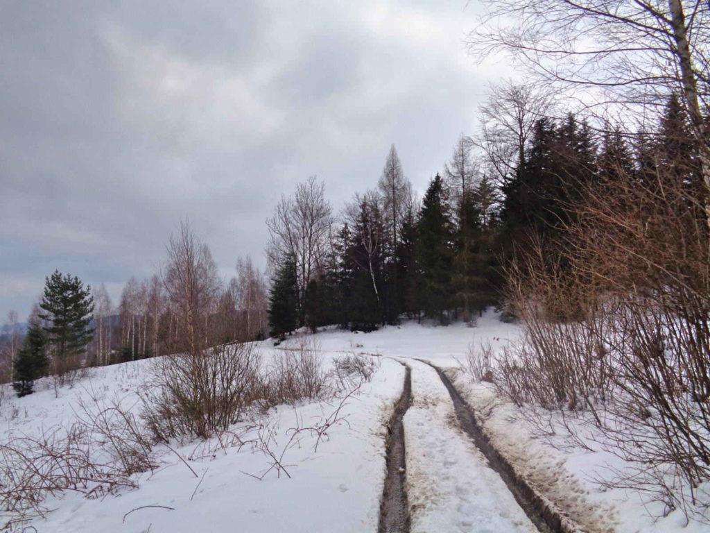 Szlak na Przełęcz Przydawki