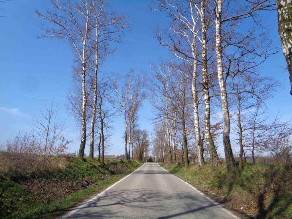Rowerowy Szlak Żeleńskich