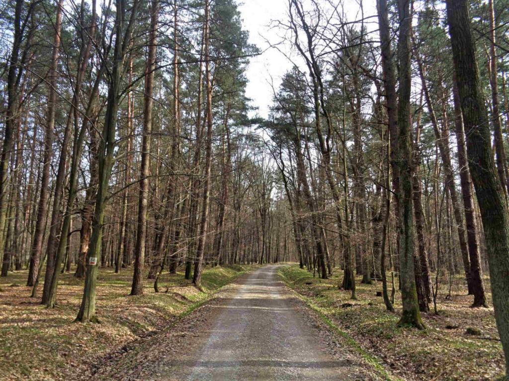 Szlak Żeleńskich, czerwony