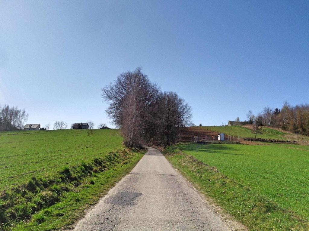 Szlak Żeleńskich, Dąbrowa