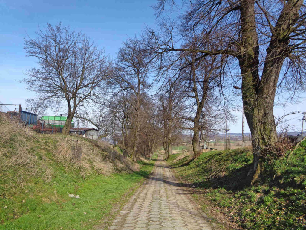 Szlak Żeleńskich, Grodkowice