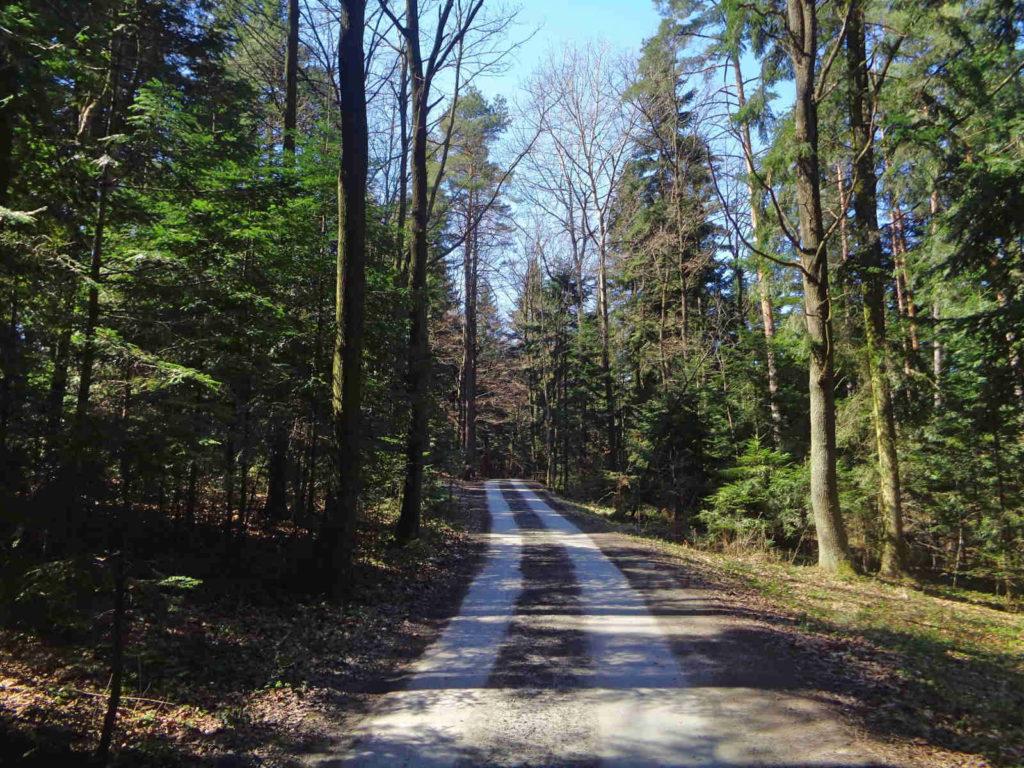 Szlak Żeleńskich, lasy