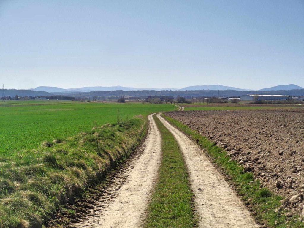 Szlak Żeleńskich, Liplas