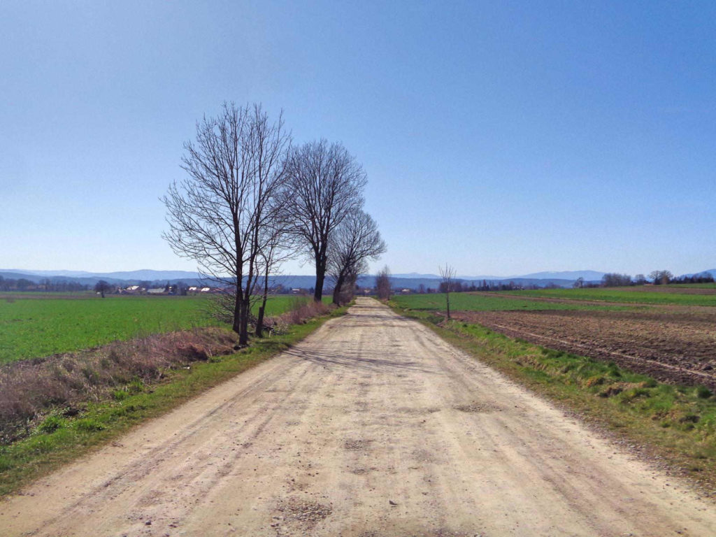 Szlak Żeleńskich, nawierzchnia