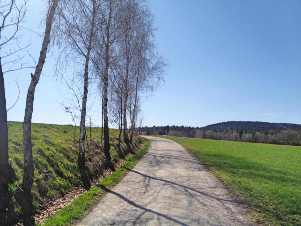 Szlak Żeleńskich, podjazdy