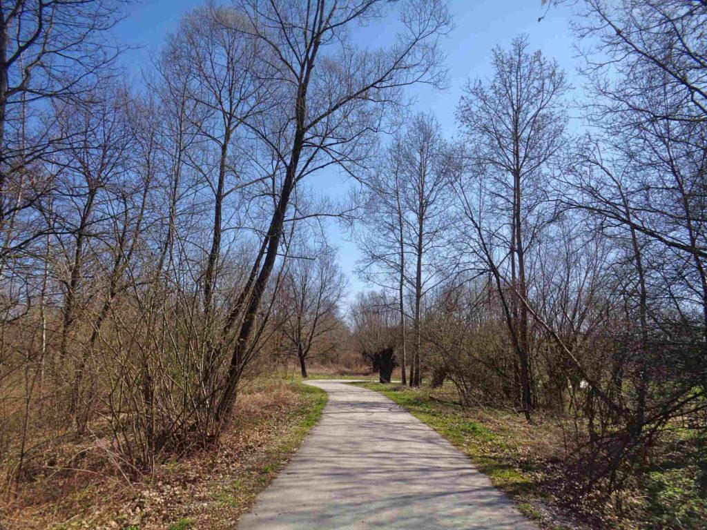Szlak Żeleńskich, ścieżki rowerowe