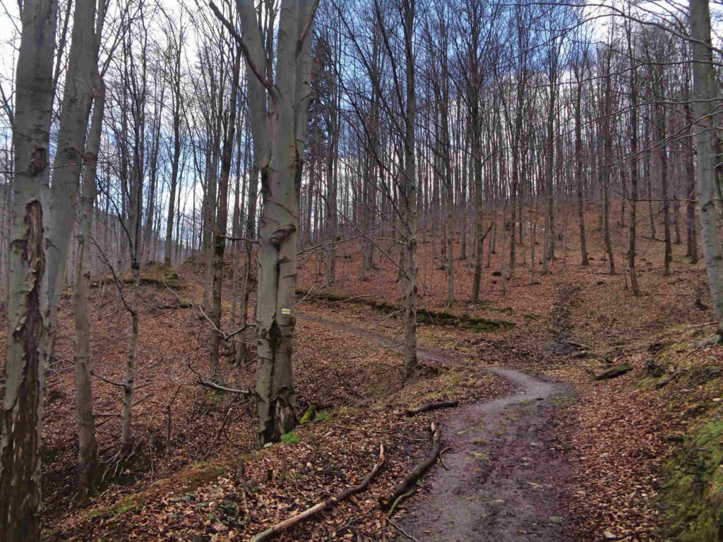 Isepnicka Przełęcz, żółty szlak