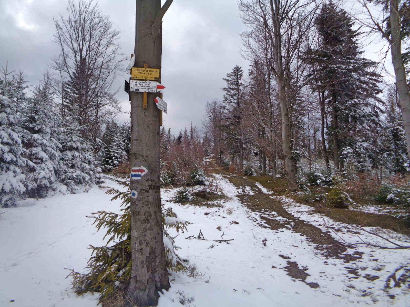 Przełęcz Przysłop Cisowy