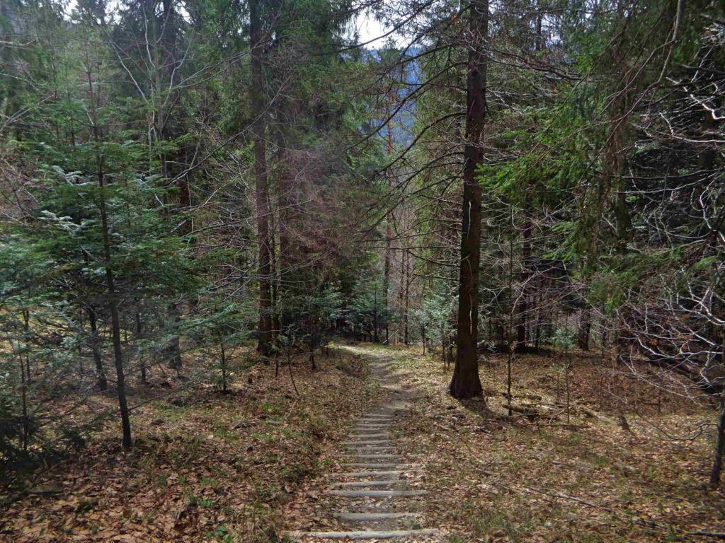 Gorce, zielona ścieżka dydaktyczna