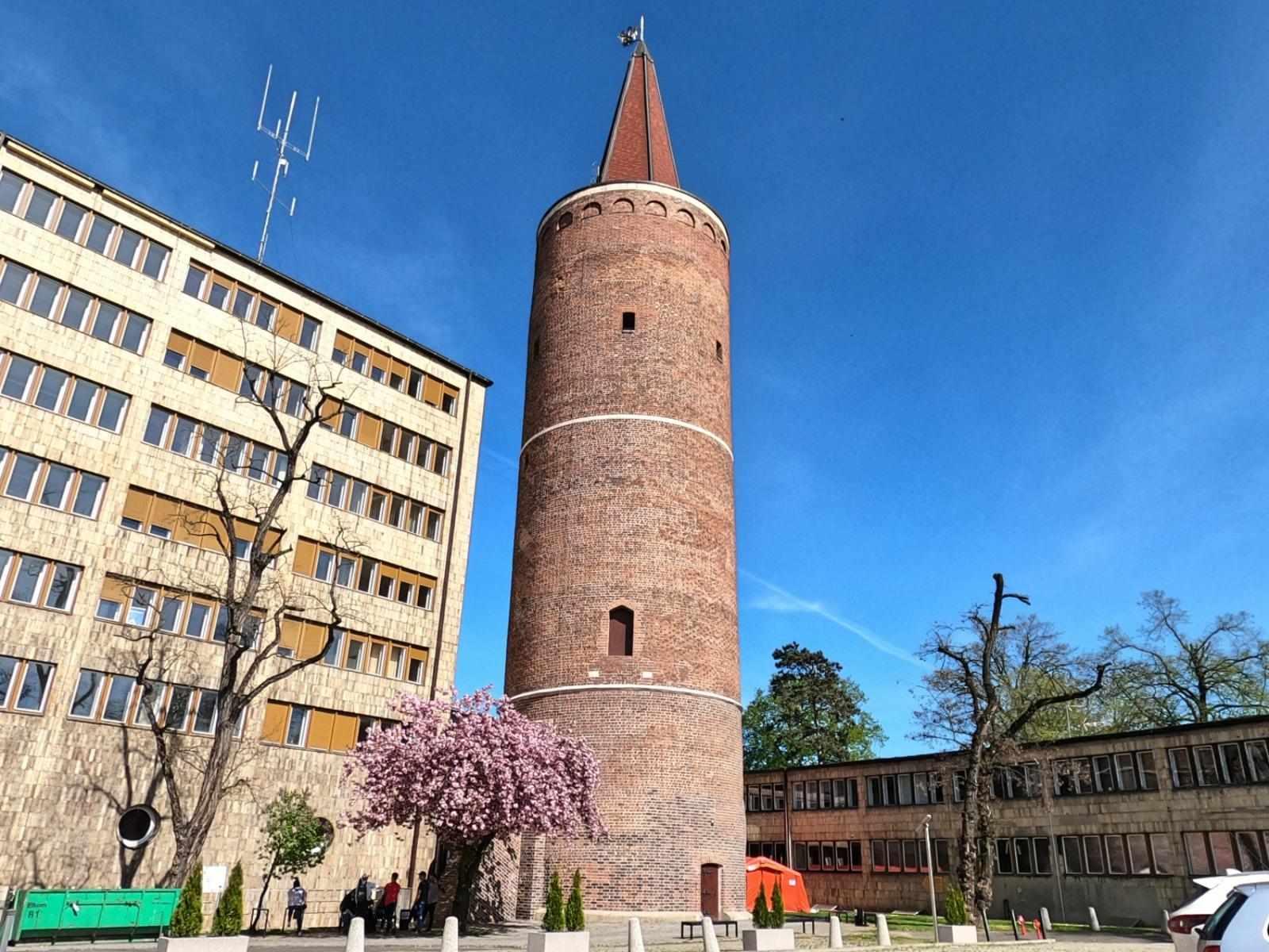 Opole, Wieża Piastowska