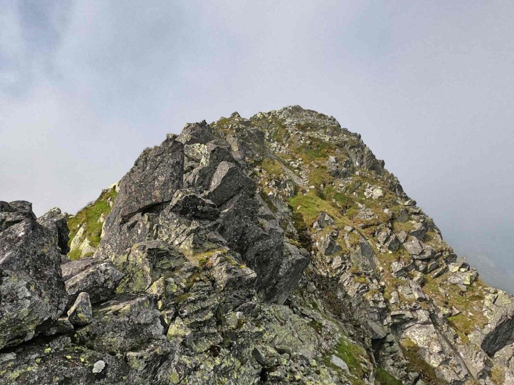 Jagnięcy Szczyt, od Przełęczy pod Kopą