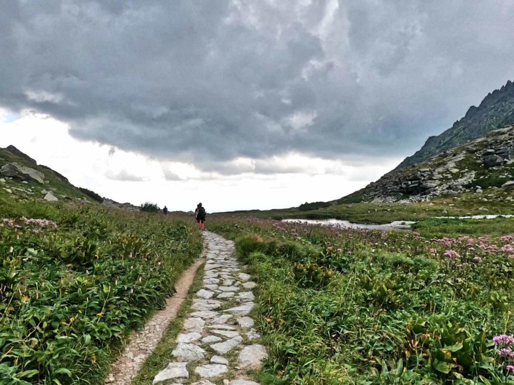 Zielony szlak przez Dolinę Wielicka
