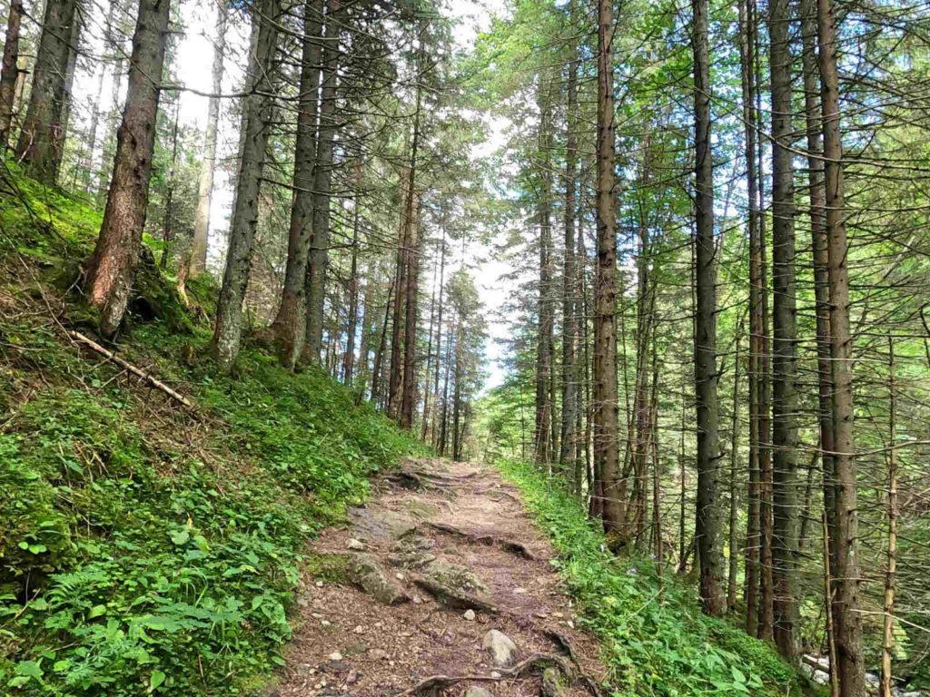 Czerwonym szlakiem przez Tatry Bielskie