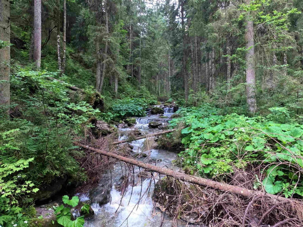Rígeľský potok