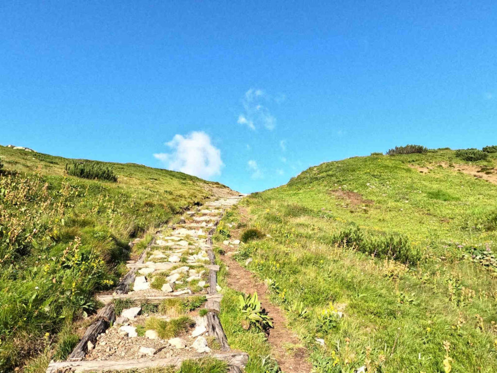 Szlak na Szeroką Przełęcz