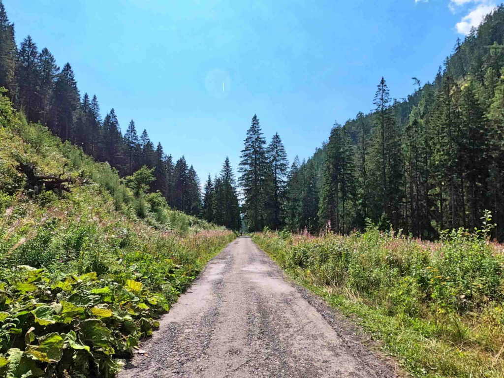 Dolina Żarska, droga
