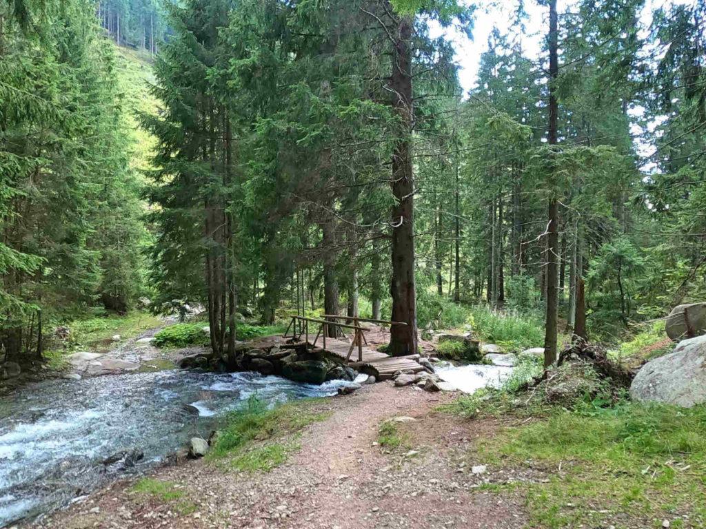 Dolina Żarska, szlak niebieski