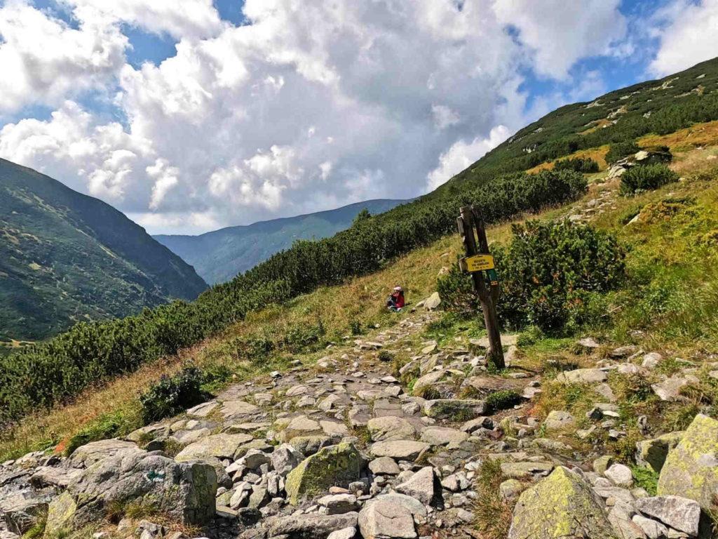Dolina Żarska, szlaki