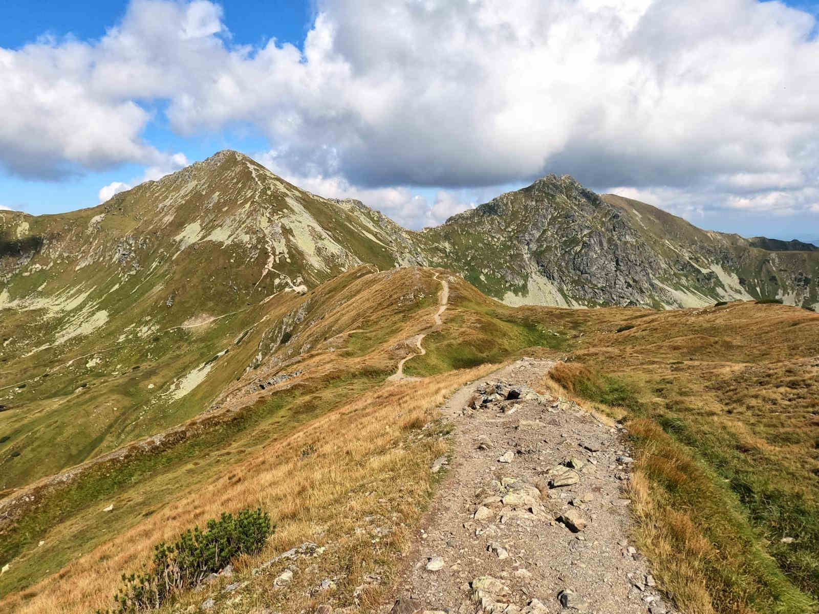Zejście na Żarską Przełęcz