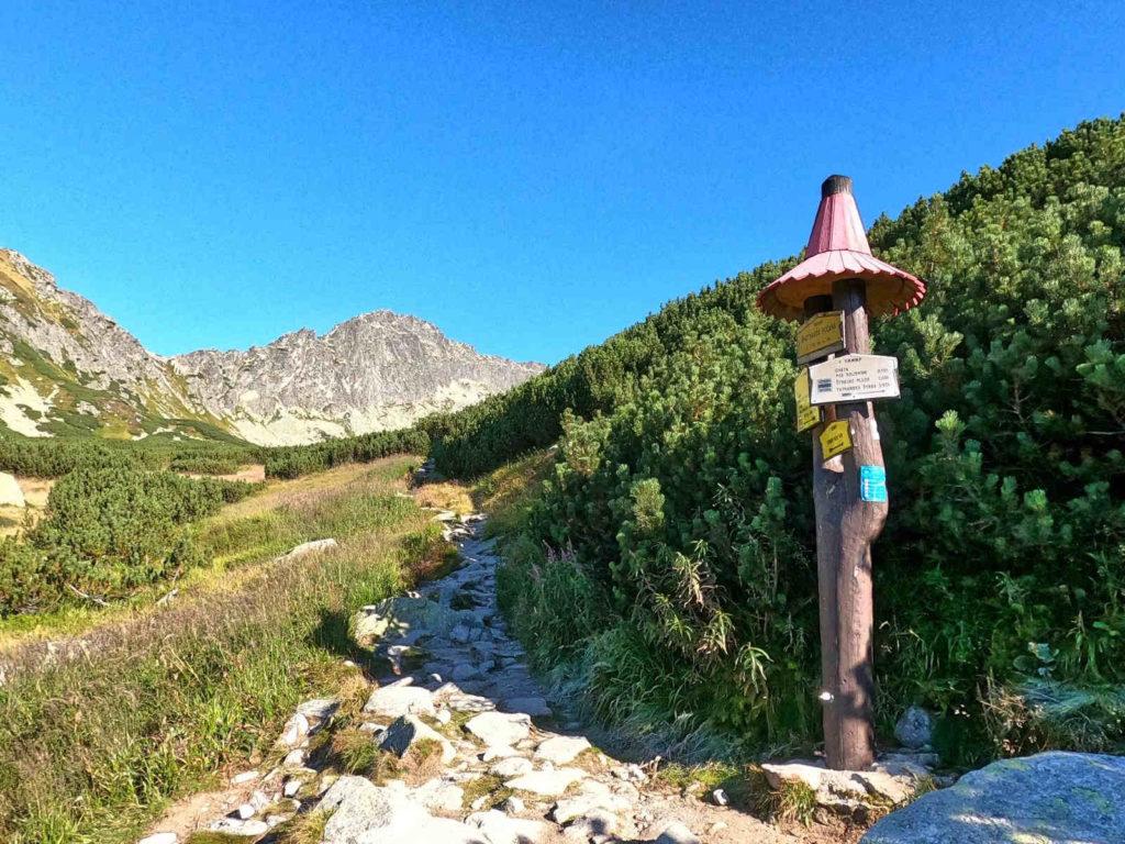 Dolina Furkotna, szlaki