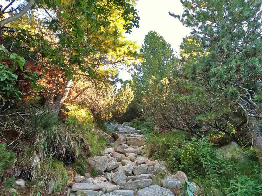 Szlak do Doliny Furkotnej