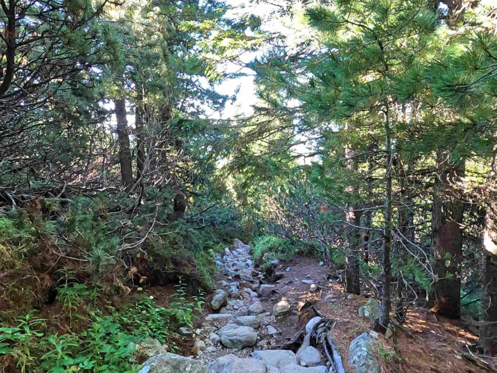 Zejście przez Dolinę Furkotną